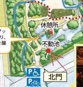 県立大磯城山公園:もみじ撮影ポイント