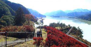 鳥居原湖畔庭園:プロ撮影ポイント