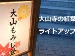 大山寺の紅葉!ライトアップ情報