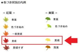 鎌倉観光協会の紅葉・黄葉の凡例