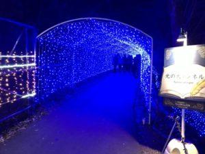 さがみ湖イミリオン:光の大トンネル