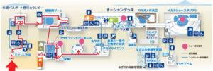 新江ノ島水族館:クラゲサイエンス 珍しいクラゲ