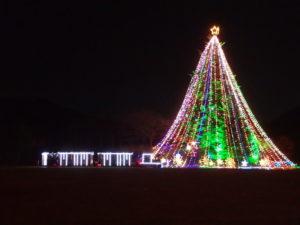 宮ヶ瀬クリスマスジャンボツリー:けやき広場