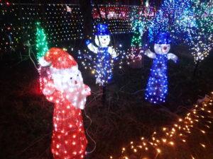 宮ヶ瀬クリスマス会場イルミネーション:オブジェ
