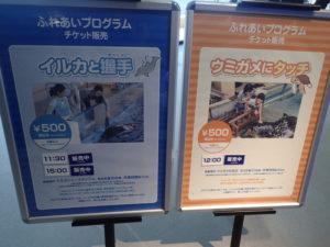 新江ノ島水族館:ふれあいプログラム