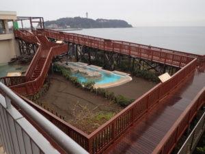 新江ノ島水族館:カピバラにごはん・さかなごはん・ウミガメタッチに行くまでの道順