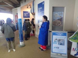 新江ノ島水族館:スタジアムカフェ
