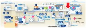 新江ノ島水族館:タッチプール