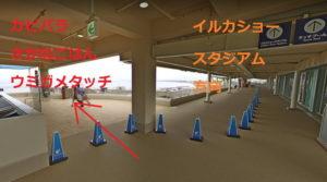 新江ノ島水族館:カピバラ・さかなごはん・ウミガメタッチ方向順路