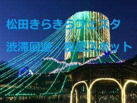 松田きらきらフェスタ:渋滞回避と夜景スポット情報